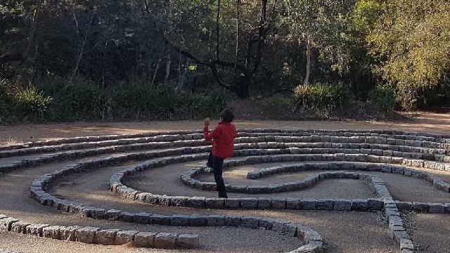 SJ in labyrinth