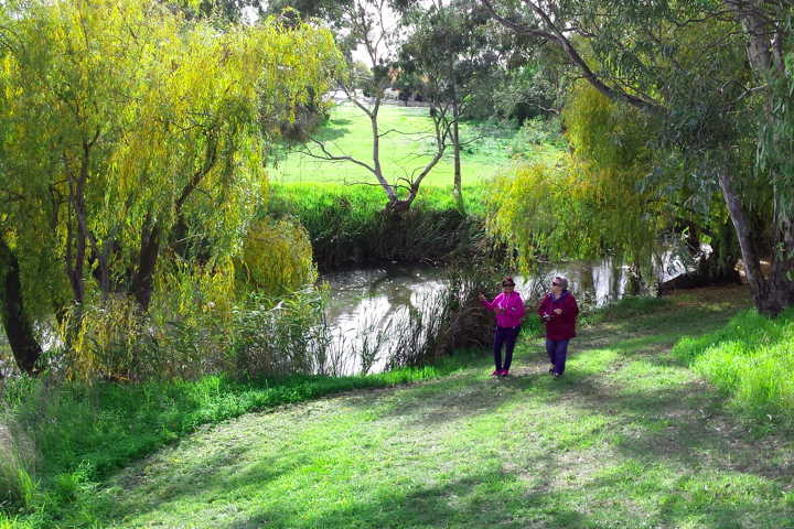 strolling along the Koororoit