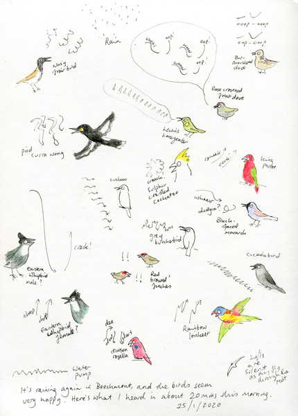sketches for nature journaling